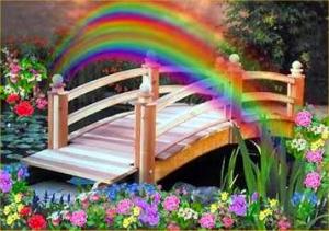 regenbogenbruecke